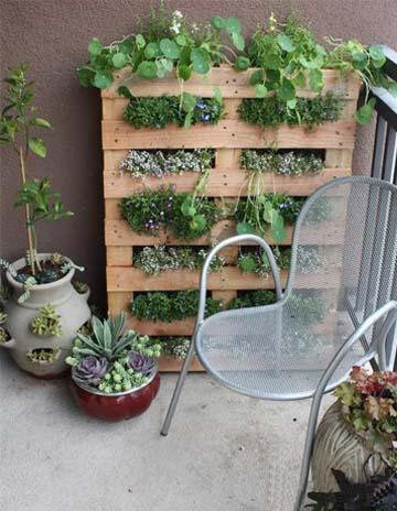 木托板改造成养花箱了。
