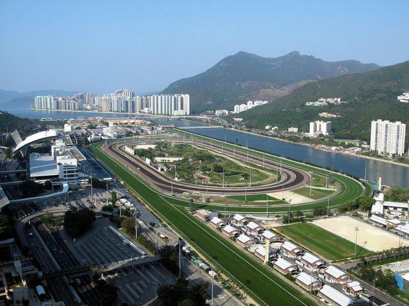香港沙田馬場看臺。