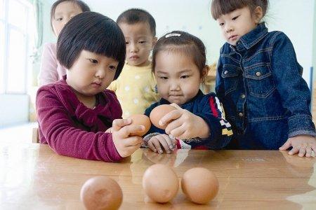 图片来自网络。不过,我小时候,斗鸡子都是小男孩的专利。