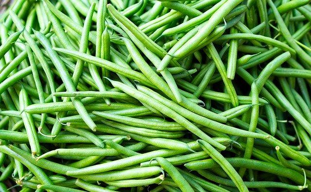 很多豆类都含有生物碱,食用时千万要注意烧熟  (图片:pixabay)