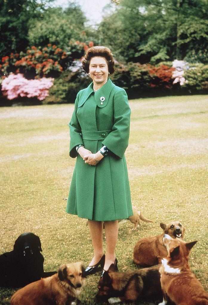伊丽莎白二世女王喜欢柯基犬 - 关于皇室的迷人事实 - 这是玫瑰色